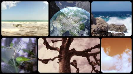 maravilha : Wonderful earth, montage