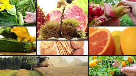 složení : harvest and agricultural products