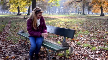 sciuridae : woman feeding squirrels in a park Stock Footage