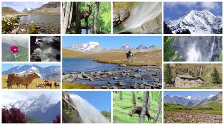 chamois : Alps. High mountain. A collage including landscapes, people, animals, peaks,  rivers and waterfalls.