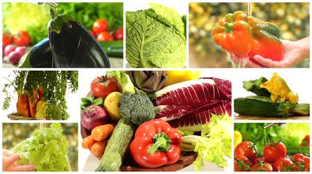 vitamin : delicious vegetables collage
