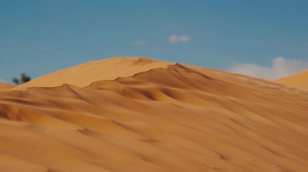 дюна : Sahara Landscape, Dunes and Wind