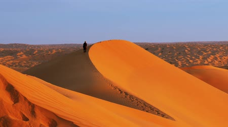 caminhada : Typical landscape of the Sahara Desert early in the morning Vídeos