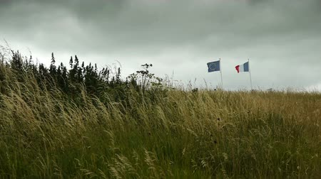 d day : National flags at D Day Beach at Arromanches, France