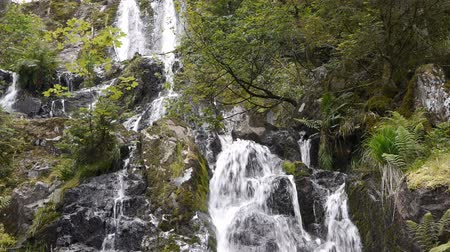 rekreasyon : Waterfall with rocks in black and green