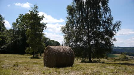 vosges : Hay bale in French landscape Stock Footage