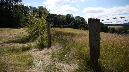 vosges : Old fence in French landscape