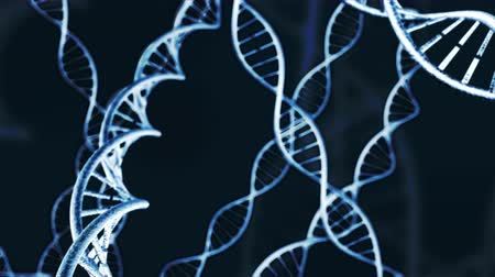 evolução : Animation or genetic DNA. Loop-able 4K Stock Footage