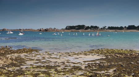 brittany : Beach and sailboats at Port Blanc. Brittany France Stock Footage
