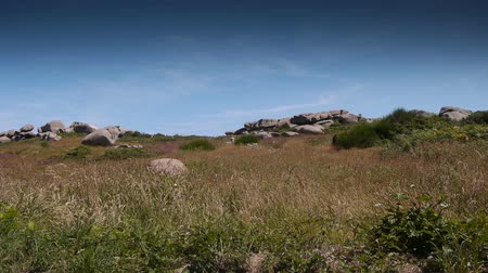 cotes d'armor : Ploumanach. Red granite rocks. Brittany France Stock Footage