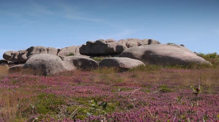 ploumanach : Pink granite rocks at Ploumanach. Brittany France