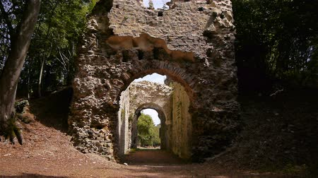 relics : Castle ruin Chateau Ganne in Normandy