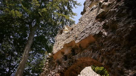 relics : Castle ruin Chateau Ganne in Normandy, PAN