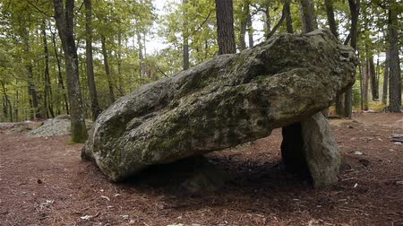 buried : Dolmen Pierre Procureuse, prehistoric stone structure in Normandy, PAN