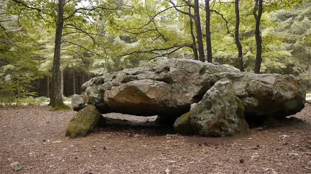 prehistory : Dolmen La Grosse Pierre, megalithic capstone in Normandy, PAN Stock Footage