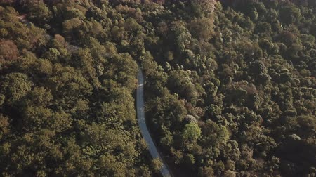 Top view of countryside road passing through the green forest and mountain Wideo