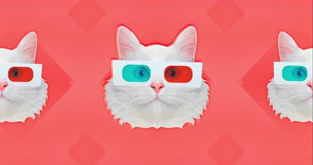 gif : Motion minimal design art. Cyber cat in 3d sunglass. White cat collage, white cat in 3D glasses shakes his head. Stylish white cat. Trendy Background