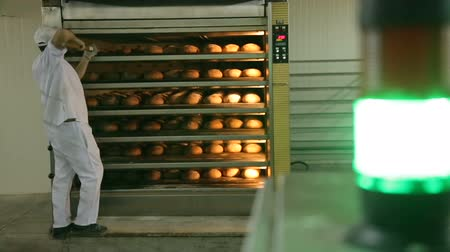 forno : Just baked. Close-up of man taking the fresh baked bread out of oven