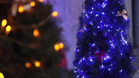 adwent : Two Christmas Trees Decorated With Blue Christmas Tree Toys And Christmas Decorations