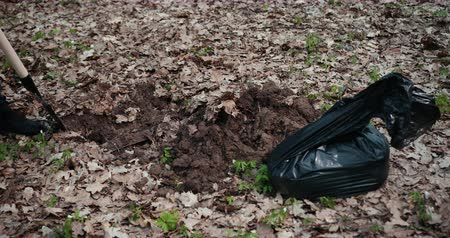elesett : The Perpetrator Digs A Pit In The Woods To Bury Stolen Things In A Black Bag. Criminal Concept. Close Up. Prores, Slow Motion