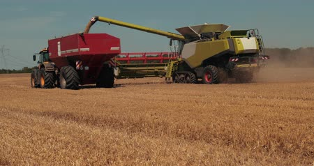 cabeçalho : Overloading grain harvester into the grain tank of the tractor trailer. Prores, Slow Motion