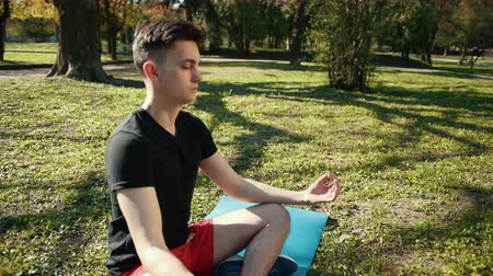 position du lotus : Young Man Meditating In Half Lotus - Beautiful Park As A Background. Boy Is Dressed In A Black T-Shirt And Red Shorts, Sitting On A Blue Carpet In A Relaxed Pose. Prores, Slow Motion, 4k