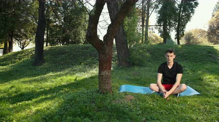 meditando : In Park A Man Breathes In Woods Pure And Fresh Air. Free And Open Spaces, Places Of Meditation And Relaxation. Concept: Park, Relaxation, Freedom, Yoga, Purity, Breathe. Prores, Slow Motion, 4k