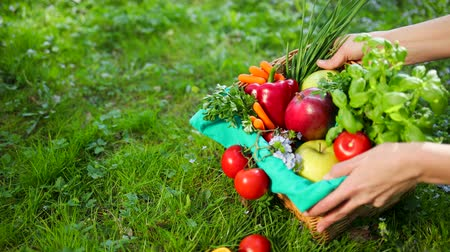 ambientalmente : Hand Corrects Vegetables And Fruit In Wooden Basket From Beige Cloth. Basket Is On Green Grass. Concept Of Healthy Lifestyle Environmentally Friendly Products And Food. Apple, Mango Greens, Onions