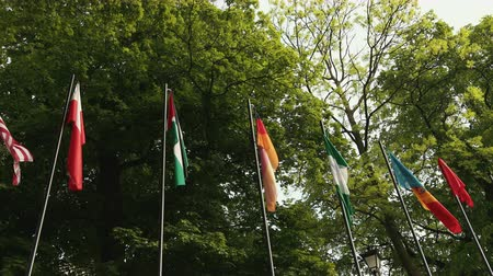 nigeria flag : Panorama from left to right with flags of different states standing on fragments. On the background are tall trees
