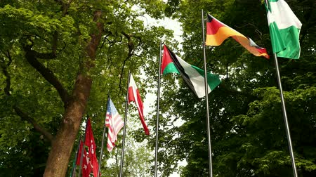 společenství : ational flags of various countries fluttering in the wind against a blue sky.