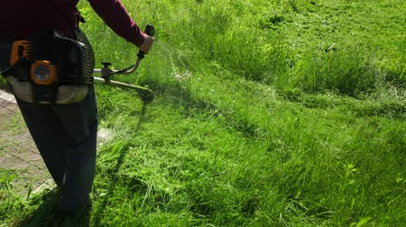 mow : Man gardener mows tall green grass, holding in courageous hands, gasoline lawn mower, in the afternoon, in Sunny weather, summer, weeds flying in different directions, close-up Stock Footage