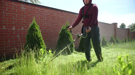 dag van de arbeid : a man with a beard gardener, wearing safety glasses, mows high green grass gasoline mower, backyard, in the afternoon, in Sunny weather, along high brick fence, plants scatter in different directions,