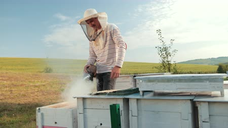 arı kovanı : man beekeeper in special clothes, holding a smoker to calm bees, a lot of smoke Stok Video