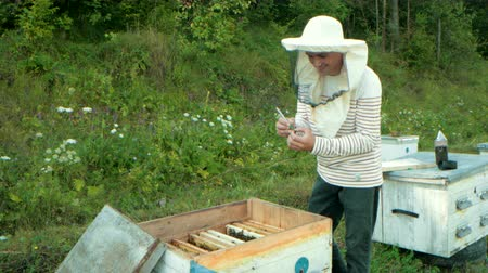 опылять : beekeeper marker for label Queens, holding fingers puts mark on Queen bee