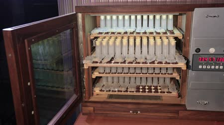 locker : shelves with cell curlers for the withdrawal of queen bee in a special locker