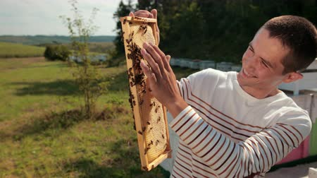 улей : man beekeeper checks honeycomb and collects bees by hand