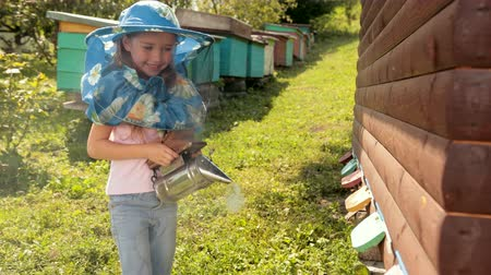 опылять : little girl in special clothes for beekeeping, holding a smoker to calm the bees