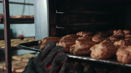 puffs : Closeup of traditional French choux pastry, already baked puffs. Hand in glove pushes scratched old tray with profiteroles back in dark oven. Stock Footage