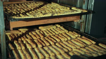 cumino : Female hands of baker push tray with long pastry baked sticks back in rack as shelf. Crispbead lies in rows, seasoned, sprinkled with cumin, caraway. Filmati Stock