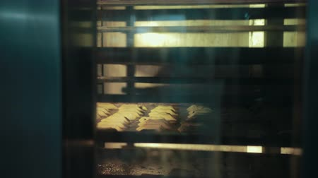 fornada : Shelvings with pastry are moving fast inside hot bakehouse oven. Pastry is baked, lying on trays behind glass door, while turning of rack. Stock Footage