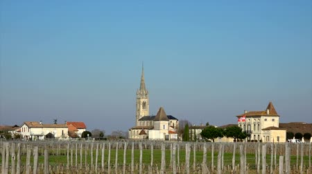Church and the vineyard, Pomerol, France