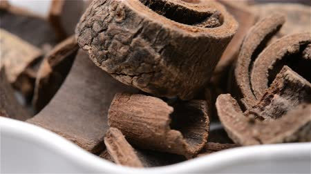 magnólia növény : Chinese herb medicine of Magnoliae Officinalis Cortex or Officinal Magnolia Bark rotating close up
