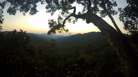Timelapse of sunset in jungles, Laos