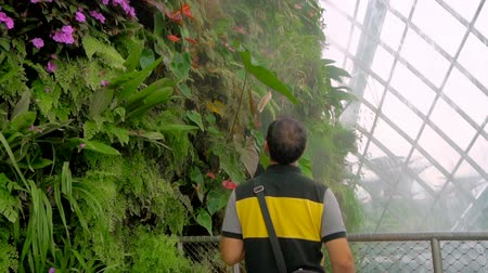 artificial flower : Male tourist enjoying flowers at Cloud forest, Gardens by the Bay in Singapore