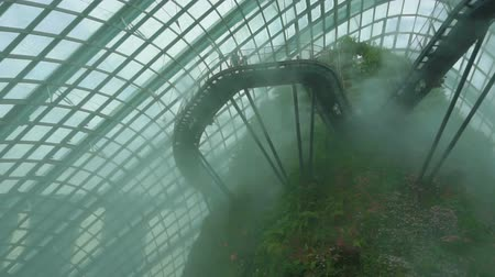 conservative : Panorama of cloud forest dome conservative in mist, Gardens by the Bay in Singapore