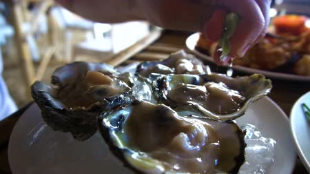 osztriga : Eating Oysters in Restaurant