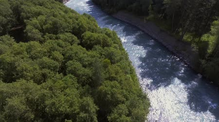 bird ecology : Beautiful flight over a mountain river. Arkhyz. Shooting from a birds eye view.