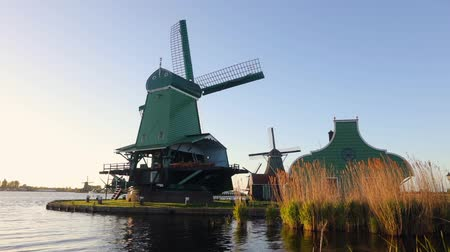 General view of traditional Dutch windmills, Netherlands. HD Footage. Стоковые видеозаписи