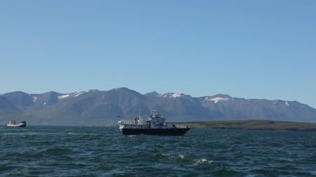reykjavik : Icelandic fishing boat for whale watching. HD Footage.