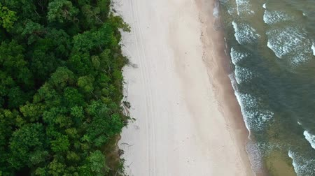 Aerial view on sand beach, sea waves and forest